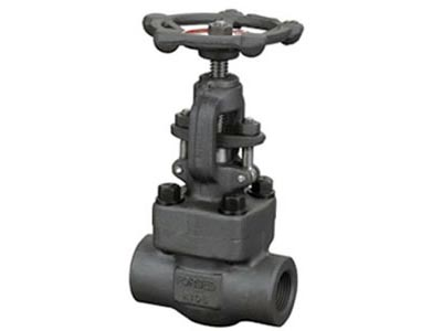 Forged Steel Globe Valve (Bolted Bonnet)